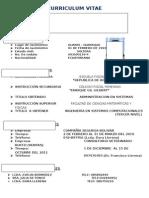 Curriculum Vitae JESSENIA (1)
