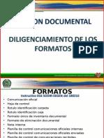 Produccion Documental y Estandarizacion de Formatos