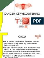 Cancer Cervicouter 2014