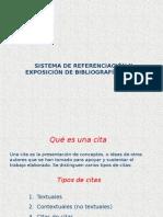 citas bibliograficas en APA.ppt