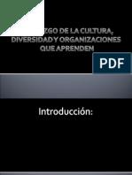 Diapositivas de Liderazgo..ppt