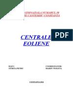 Referat Centrale Eoliene