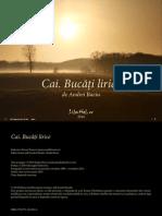 A Baciu Cai Buca Tili Rice