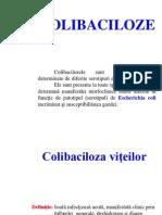 COLIBACILOZE.pdf
