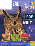 L'OISEAU MAG Junior n°10