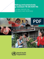 2010 Global Report TB-MDR