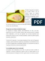 Taller Aguacate