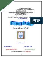 Rapport L3E Homi (LAMTI)