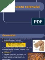 2.Patologia benigna a colonului.ppt