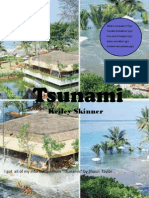 Natural Disaster Magazine