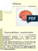Neuroreabilitare Final 123