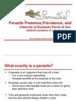 parasite presentation