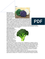 Brocoli – Cultivare in Gradina