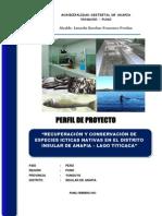 13665_OPIMDANAPIA_2013520_1894.pdf