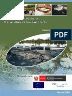 ESTRATEGIA DE DESARROLLO DE LA ACUICULTURA EN LORETO.pdf