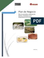 resumen_plan_de_negocio_paiche_gamitana_loreto.pdf