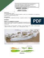 TP Ambiente Glaciario 2014