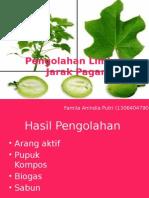 ppt PKM
