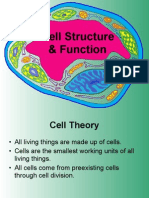 cell structure function ppt