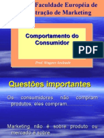 Comportamento Do Consumidor Introducao
