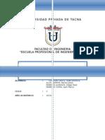 Informe de Mecanica de Suelos i(2010) Final (1)