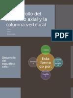 Desarrollo del esqueleto axial y la columna vertebral.pptx