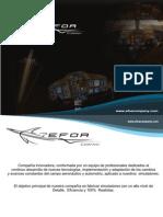 EFOA Company Simuladores