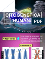 Citogenetica Bien