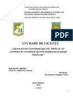 Licenta Final 17 Iunie(1), Consultatna in Aricultura