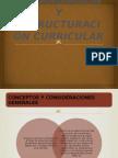 Organizacion y Estructuracion Curricular