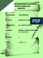 Ensayo Publicacion Electronica