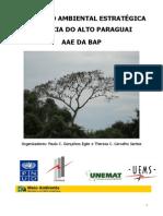 Livro Verde_Pantanal.pdf
