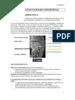 420-2014-02-26-08 Anomalias congenitas.pdf
