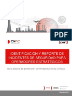 Int Cnpic Identificacion Reporte Incidentes