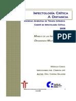2009 Infecciones Por Candida en UTI Revision