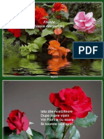 Floriile