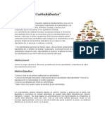 ENSAYO carbohidratos.docx