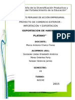 Proyecto Terminado Harina de Platano - Ferly