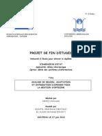 rapporthamlimarouane-121118140800-phpapp01.pdf