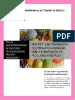 Determinacion Determinacion de ezimas con la maduracion de productos vegetales