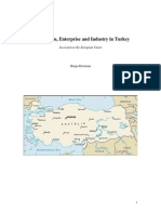 Competition, Enterprise and Industry in Turkey