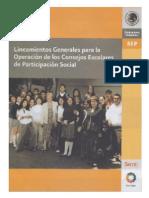 Acuerdo Numero 535 Por El Que Se Emiten Los Lineamientos Generales Para La Operacion de Los Consejos Escolares de Participacion Social