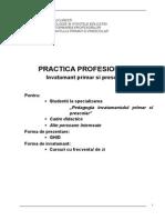 Practica Profesionala pentru PIPP