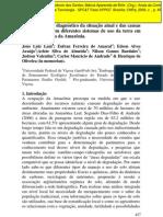 Uso da terra em áreas desmatadas na Amazônia