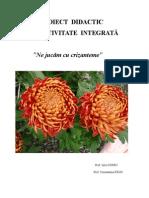 Proiect de activitate didactica integrata