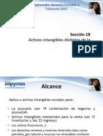 Modulo II Seccion No.2 NIIF18 Activos Intangibles