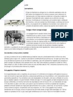 Animales Extintos en El Siglo XX y XXI