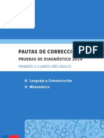 Pauta de Correccion Diagnostico 2014