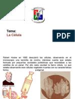 Exposicion de La Celula