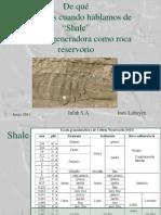 shale pirolisis.pdf